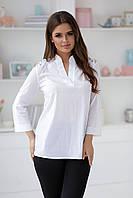 Блуза женская в расцветках 35342, фото 1