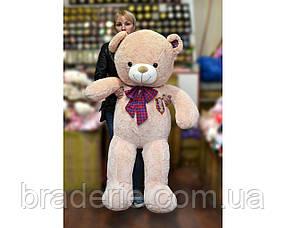 Медведь (шкура не набитая) с бантом 130 см 0829-2