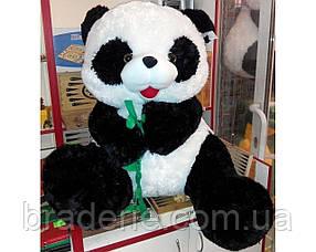 Медведь (шкура не набитая) Панда с веткой 78см 2155-78