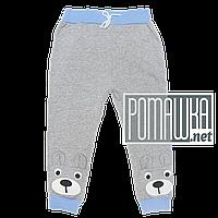 Детские спортивные штаны для мальчика р. 116 с начесом тонкие ткань ФУТЕР 3862 Серый