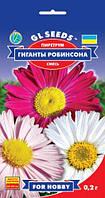 Пиретрум Гигант Робинсона многолетник с яркими крупными ромашковидными цветками, упаковка 0,2 г