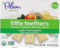 Plum Organics, Little Yums, Organic Teething Wafers, Spinach, Apple & Kale, 6x0.5oz