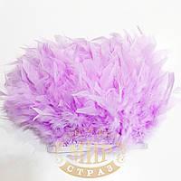 Тесьма перьевая из перьев индюка, цвет Lt Purple, цена за 0.5м