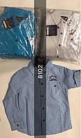 Рубашка для мальчиков Setty Koop оптом, 6-16 лет.