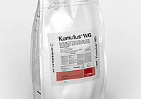 Фунгицид Кумулюс ДФ 80 % в.г. BASF - 20 кг