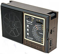 🔝 Портативный радиоприемник Golon RX-9922UAR с USB, FM радио на батарейках, с доставкой по Украине | 🎁%🚚, фото 1