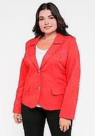 Классический женский жакет с длинным рукавом Modniy Oazis красный 9061/4, фото 1
