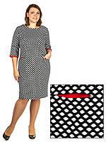 Платье Selta 750 размеры 50, 52, 54, 56, фото 1