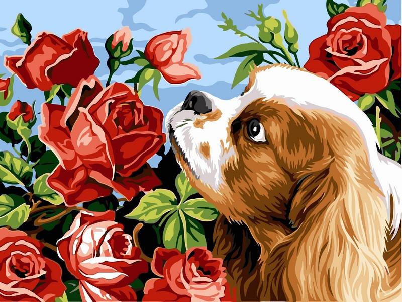 """Картина по номерам """"Кокер спаниэль и розы"""", 30x40 см., Babylon"""