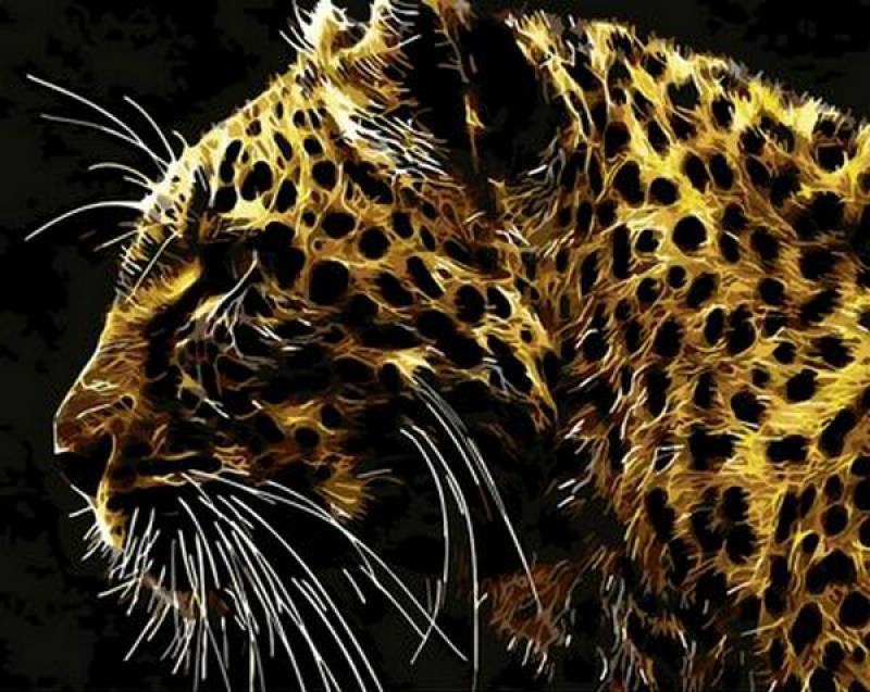Картина по номерам Хищный взгляд , 40x50 см., Mariposa