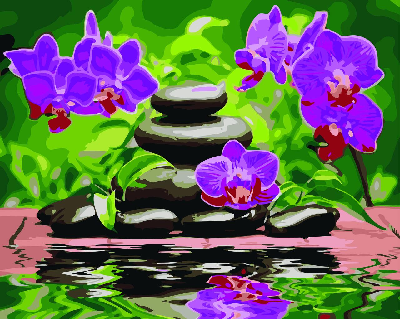 Картина по номерам Орхидея на камнях, 40x50 см., Домашнее искусство