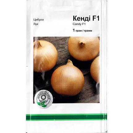 """Насіння цибулі ріпчастої, раннього """"Кенді F1 (1 р) від Seminis, Голандія, фото 2"""