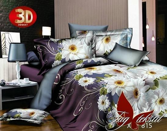 Постельное белье ТМ TAG/2-спальные/Поликоттон 3D XHY815, фото 2