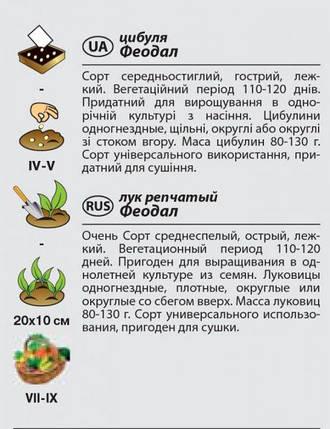 "Семена лука репчатого ""Феодал"" (1 г) от Agromaksi seeds, фото 2"