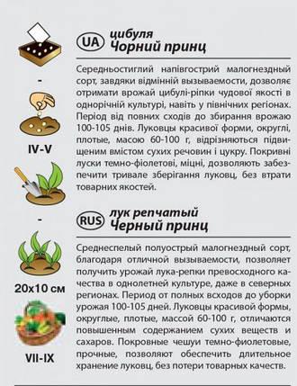 """Семена лука репчатого """"Черный принц"""" (1 г) от Agromaksi seeds, фото 2"""