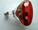 Лампа инфракрасная 250 Вт, фото 6