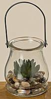Суккулент искусственный прозрачном стекле h10см Гранд Презент 1003660