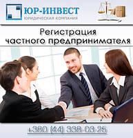 Регистрация частного предпринимателя