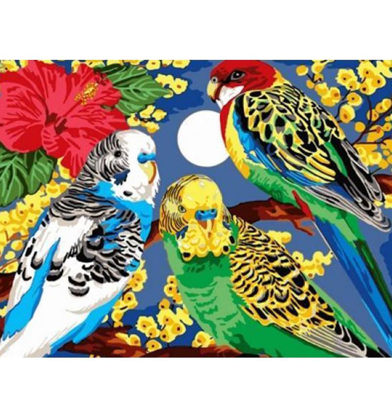 Картина по номерам Попугайчики в цветах 30 х 40 см (VK202)