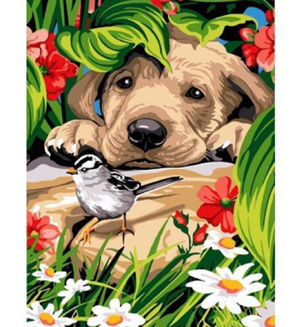 Картина по номерам Птичка и любопытный щенок 30 х 40 см (VK203)