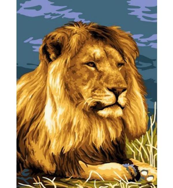 Картина по номерам Царь зверей 30 х 40 см (VK206)