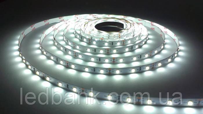 Светодиодная лента SMD 3528 60 LED/m IP20 Premium White MOTOKO