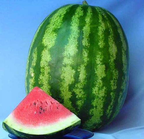 Кримсон Свит F1 - семена арбуза, Lark Seeds 500 грамм