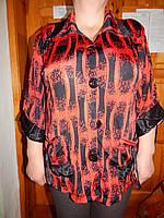 Блуза женская   размер 54,56,58,60,62, фото 1
