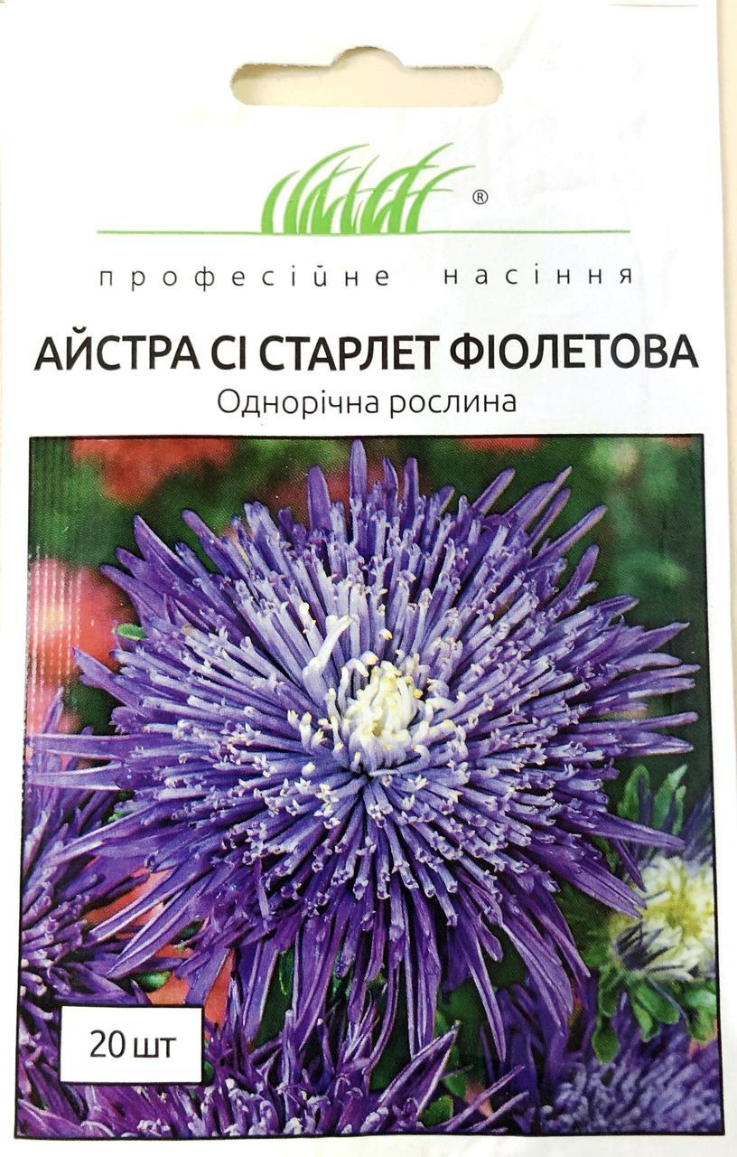 Астра Си Старлет фиолетовая 20 шт