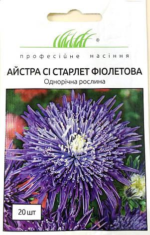 Астра Си Старлет фиолетовая 20 шт, фото 2