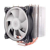 Кулер для процессора Aardwolf Performa 10X RGB (APF-10XPFM-120RGB)