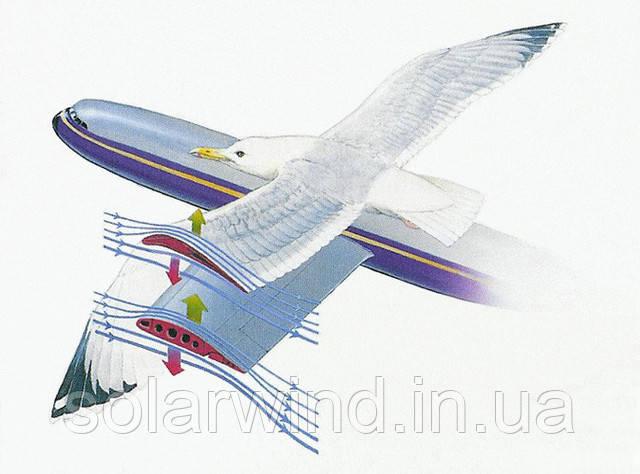підйомна сила крила