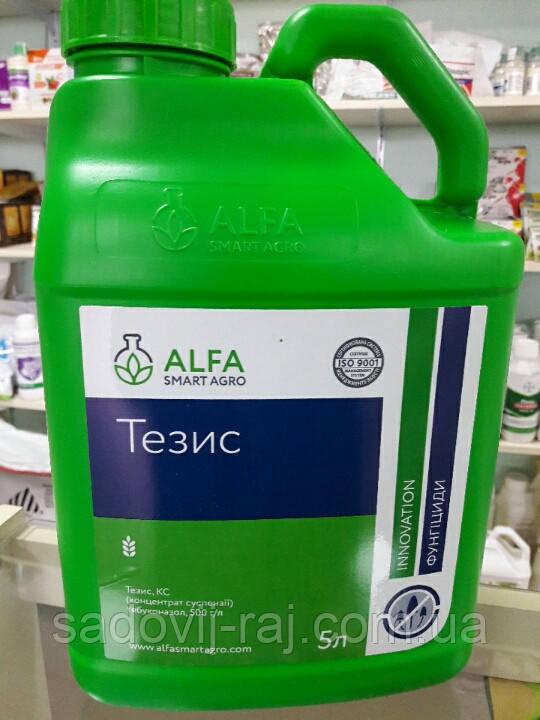 Фунгицид ТЕЗИС К.С. 5 л ALFA Smart Agro