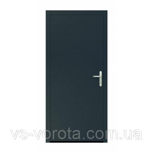 Двери входные Hormann Thermo 46 010 Titan Metallic CH 703