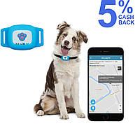 GPS ошейник для собак MYOX MPT-03DU (голубой)
