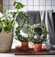 Искусственные растения и цветы