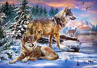 Картина по номерам Волки на брегу реки 40 х 50 см (VP1024)