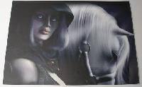 Наклейка на ноутбук Maxxtro 0180, девушка и лошадь, универсальная