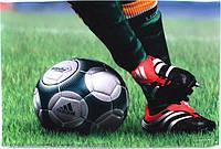 Наклейка на ноутбук Maxxtro 2001, football, универсальная