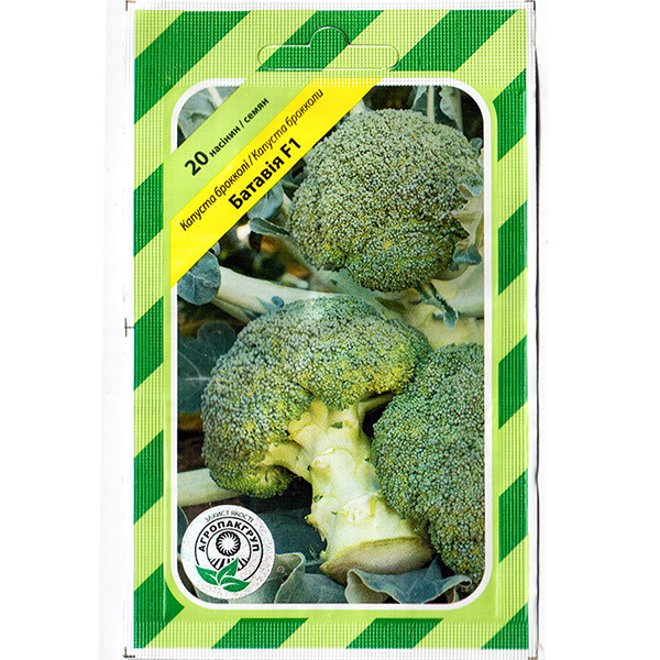 """Семена капусты брокколи """"Батавия"""" F1 (20 семян) от Bejo, Голландия"""