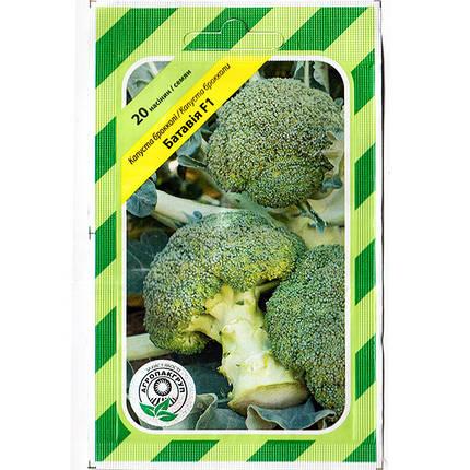 """Семена капусты брокколи """"Батавия"""" F1 (20 семян) от Bejo, Голландия, фото 2"""