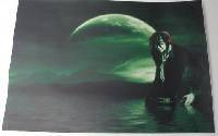 Наклейка на ноутбук Maxxtro 3124, зеленая луна, универсальная