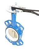 Задвижка поворотная Баттерфляй диск нержавеющая сталь упл. PTFE Ду65 Ру16, фото 6