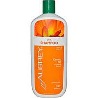 Aubrey Organics, J.A.Y. Desert Herb, Восстанавливающий шампунь, для сухих/поврежденных волос, 16 жидких унций (473 мл)
