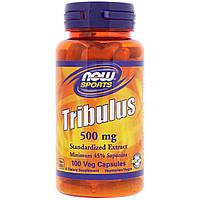 Now Foods, Якорцы стелющиеся, 500 мг, 100 растительных капсул