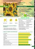 Семена подсолнечника Украинское солнышко ВНИС, фото 2