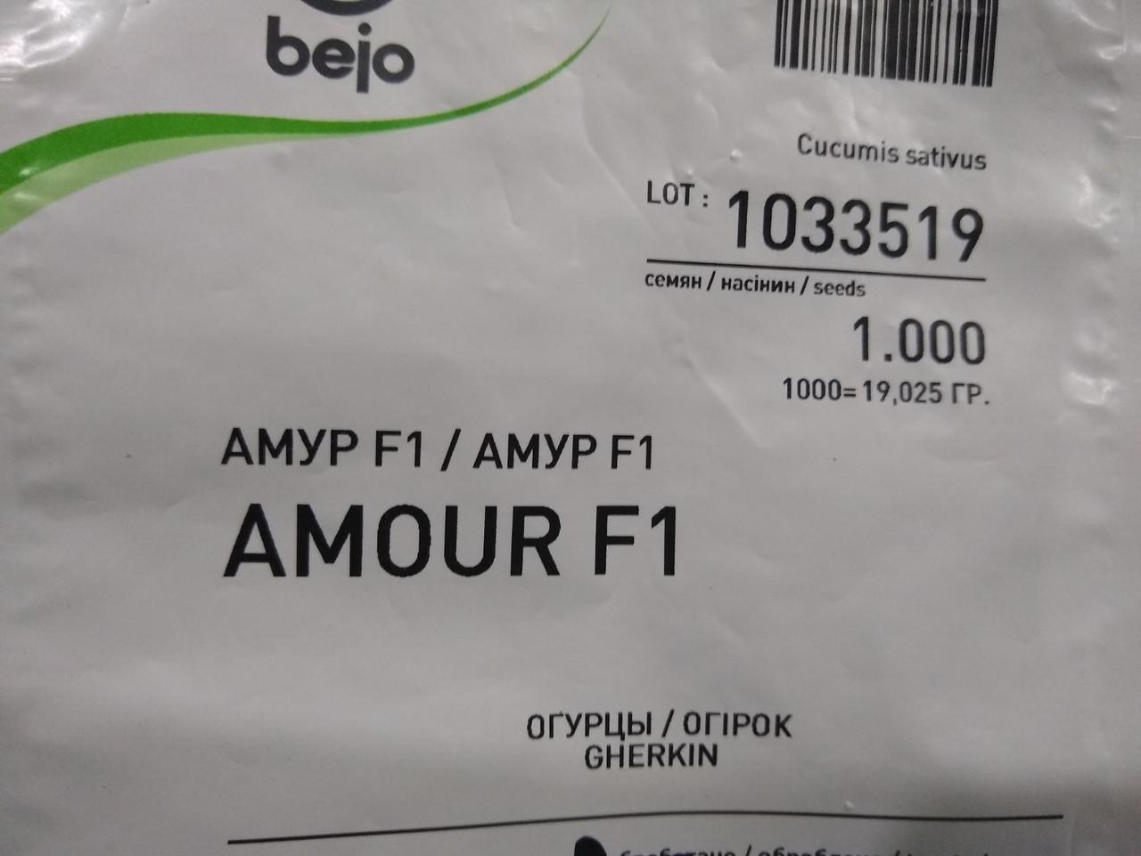 Насіння Огірок Амур F1 ранній гібрид самозапильний 10 насінин Bejo, Голландія