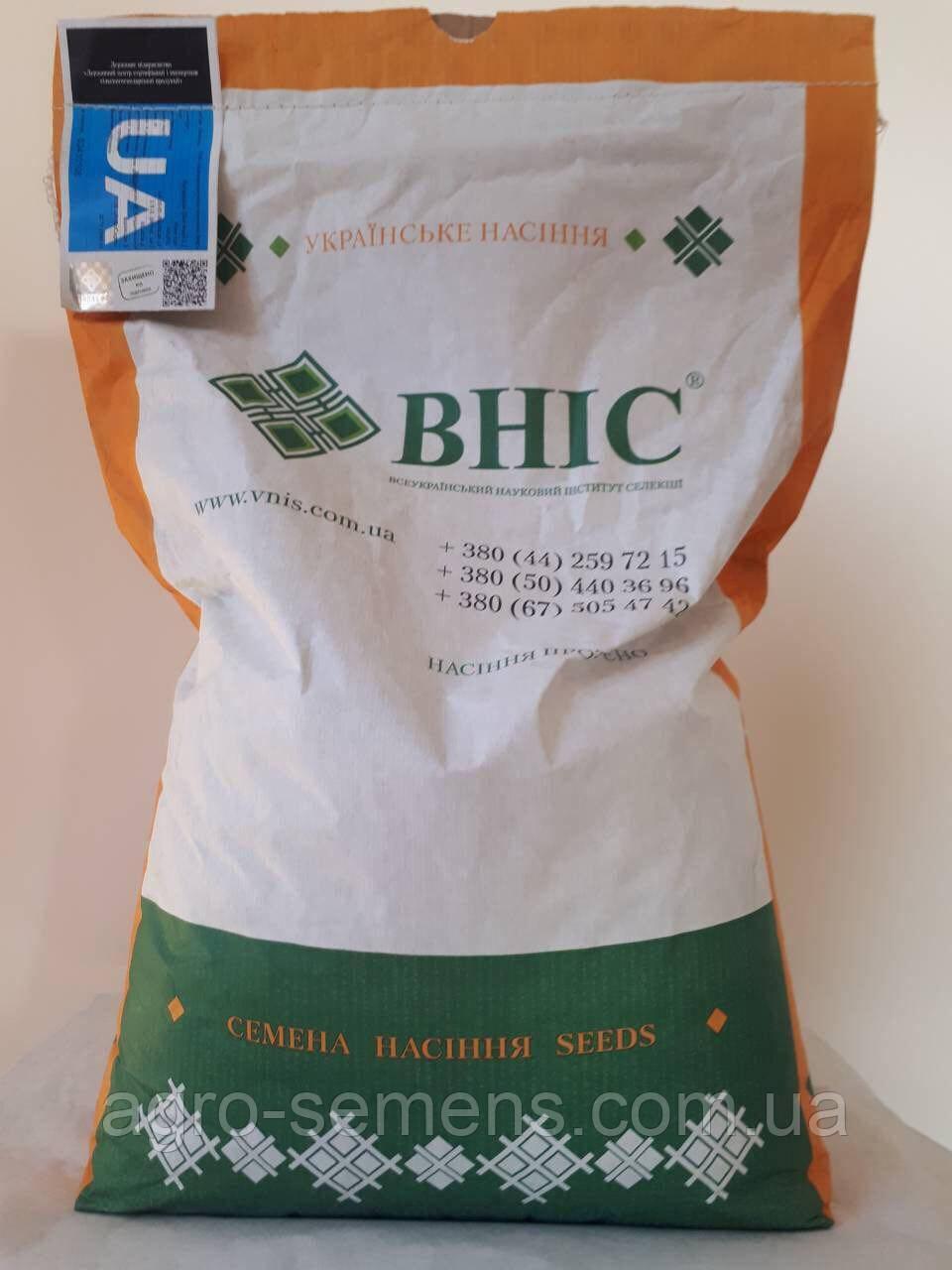 Семена кукурузы Гран 6 ФАО 300