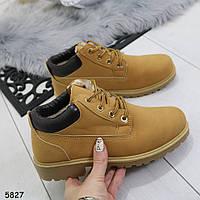 Ботинки_5827 размер 38, фото 1