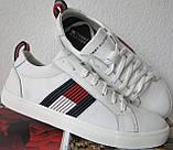 Tommy Hilfiger кожаные белые кеды! Туфли мужские кроссовки в стиле Томми Хилфигер, фото 3